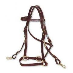 "Circle Y 3/4"" Trail Halter Bridle"