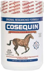 Cosequin Concentrate 1400 gram