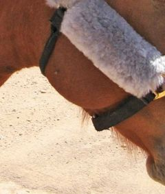 6 inch Long Merino Sheepskin Cheek Pads Horse Halter or Bridle, Pair
