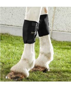 Therapeutic Horse Knee Boots